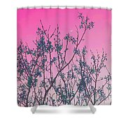 Spring Branches Rose Shower Curtain