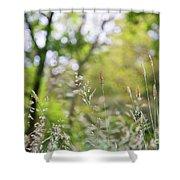 Spring Breeze 3 Shower Curtain