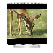 Spring Buck Shower Curtain