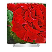 Spring Bud's 4 Shower Curtain