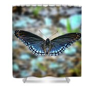 White Admiral Or Red-spotted Purple Shower Curtain