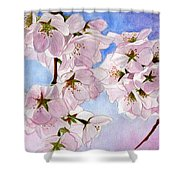 Spring- Cherry Blossom Shower Curtain
