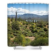 Spring Color In The Desert Shower Curtain