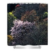 Spring Colors On The Parkway Shower Curtain