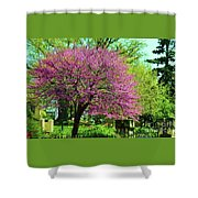 Spring Contrasts At Joslyn Castle Omaha Shower Curtain