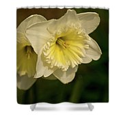 Spring Couple Shower Curtain