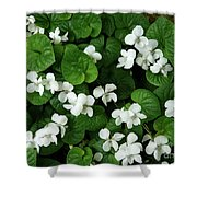 Spring Cover Shower Curtain