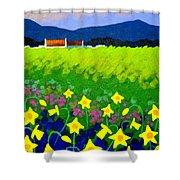 Spring Daffs Ireland Shower Curtain
