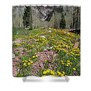 Spring Dandelion And Mountain Landscape Shower Curtain
