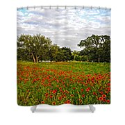 Spring Dreams Are Made Of These Shower Curtain