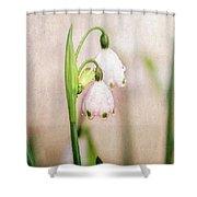 Spring Duet Shower Curtain