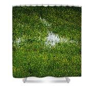 Spring Field Memphis Shower Curtain