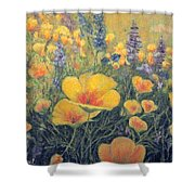 Spring Field Of Flowers Shower Curtain
