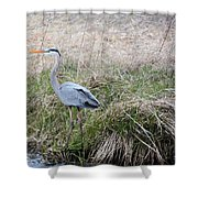 Spring Fishing Shower Curtain