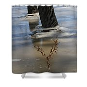 Spring Flood Shower Curtain