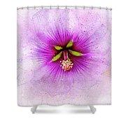 Spring Flower Frill Shower Curtain