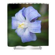 Spring Flower Shower Curtain