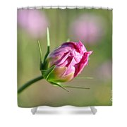 Spring Flower Savannah, Ga Shower Curtain