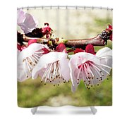 Peach Flowers Shower Curtain