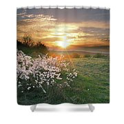 Spring Flowers. Shower Curtain