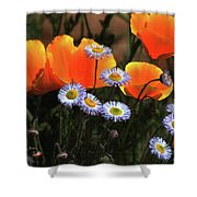 Spring Flowers In Payson Arizona Shower Curtain