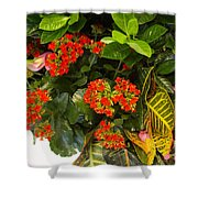 Spring Flowers No.12 Shower Curtain