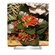 Spring Flowers No.17 Shower Curtain
