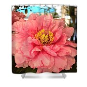 Spring Flowers No.9 Shower Curtain