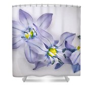 Spring Flowers On White Shower Curtain