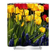 Spring Flowers Square Shower Curtain