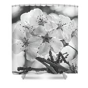 Spring Flowers - White Shower Curtain