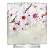 Spring Glory 1 Shower Curtain