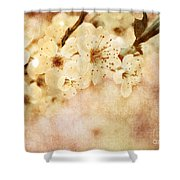 Spring Glory 2 Shower Curtain