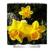 Spring Gold Shower Curtain
