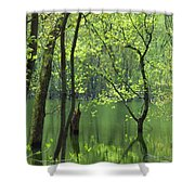 Spring Green  Shower Curtain by Lori Frisch