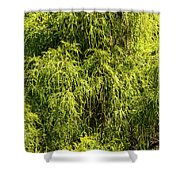 Spring Greens Shower Curtain