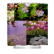 Spring Has Sprung... Shower Curtain
