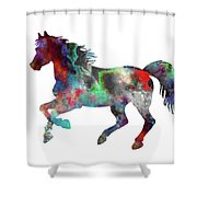 Spring Horse 2 Shower Curtain