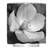 Spring - Id 16235-142734-6855 Shower Curtain