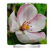 Spring - Id 16235-142747-0642 Shower Curtain