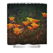 Spring In A Poppin' Shower Curtain