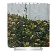 Spring In Borrego Shower Curtain