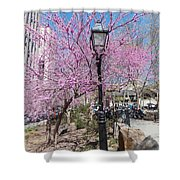 Spring In  Columbus Park 1 Shower Curtain