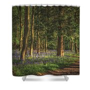 Spring In Haywood No 2 Shower Curtain