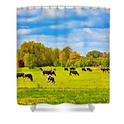 Spring In Holland-1 Shower Curtain