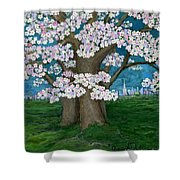 Spring In New York City Shower Curtain