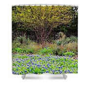 Spring In Texas Shower Curtain