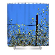 Spring In The Country Shower Curtain