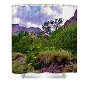 Spring In The Mountains Shower Curtain