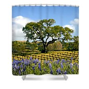 Spring In The Vineyard Shower Curtain